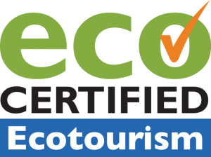 eco-certified-LOGO
