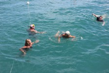 Snorkelling & swimming on a morning adventure cruise